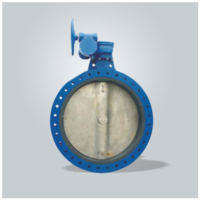Lining Butterfly Valve